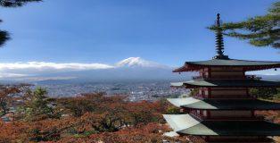 Ikigai: Die japanische Art, Deine Berufung zu finden